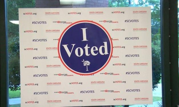 How volunteers make polling stations work