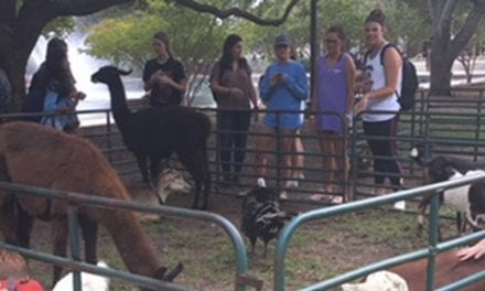 USC petting zoo helping students relieve stress