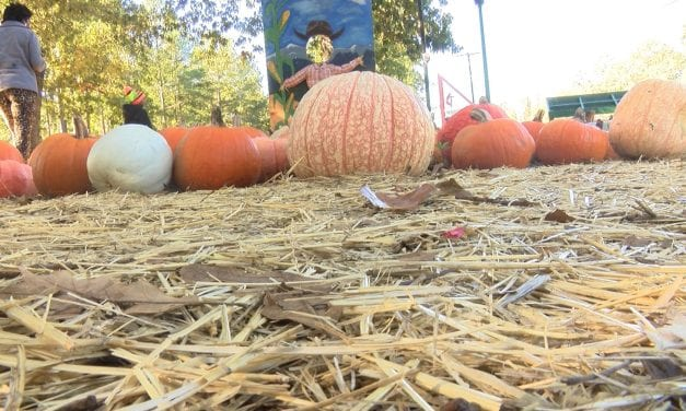 "The ""Pumpkin Church"" fundraiser raises money to help those in need"