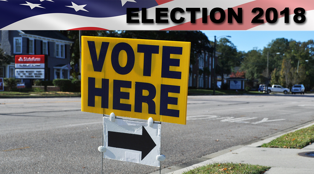 Young voters weigh in and cast ballots