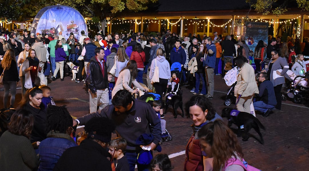Vista Lights readies Columbia for Christmas