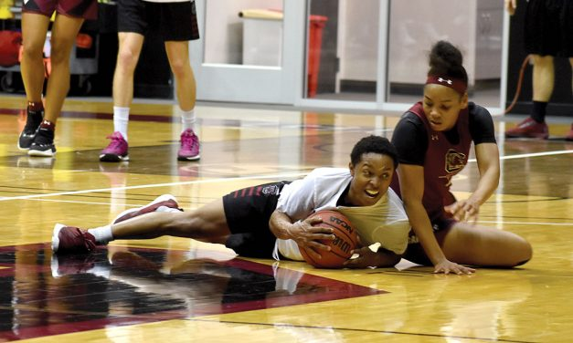 Gamecocks women's basketball's secret to success