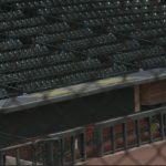 Columbia mayor joins taskforce to save Minor League Baseball