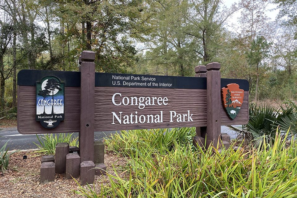 Water/Ways exhibition to open at Congaree National Park