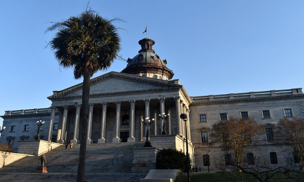 "S.C. ""heartbeat"" bill temporarily blocked but could reach nation's high court"
