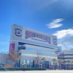 UofSC announces in-person graduation at Williams-Brice Stadium this spring