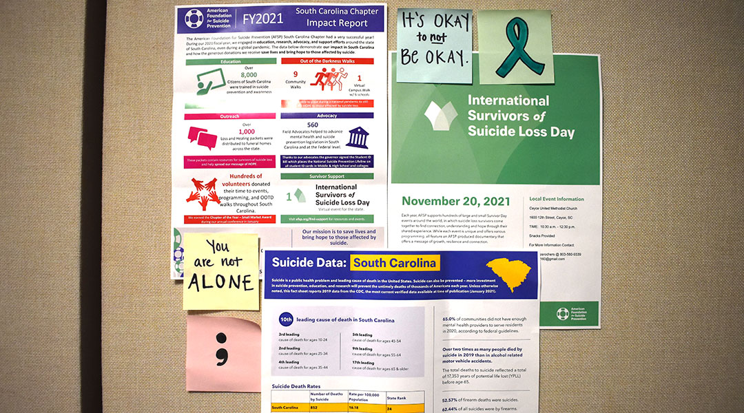 You are not alone:  A walk to encourage suicide prevention awareness
