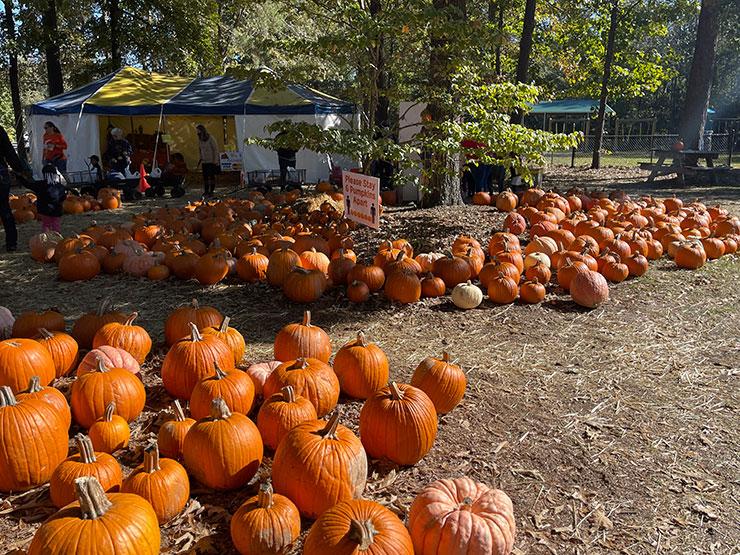Pumpkin Patch Northeast UMC celebrates over twenty years, gives back to community