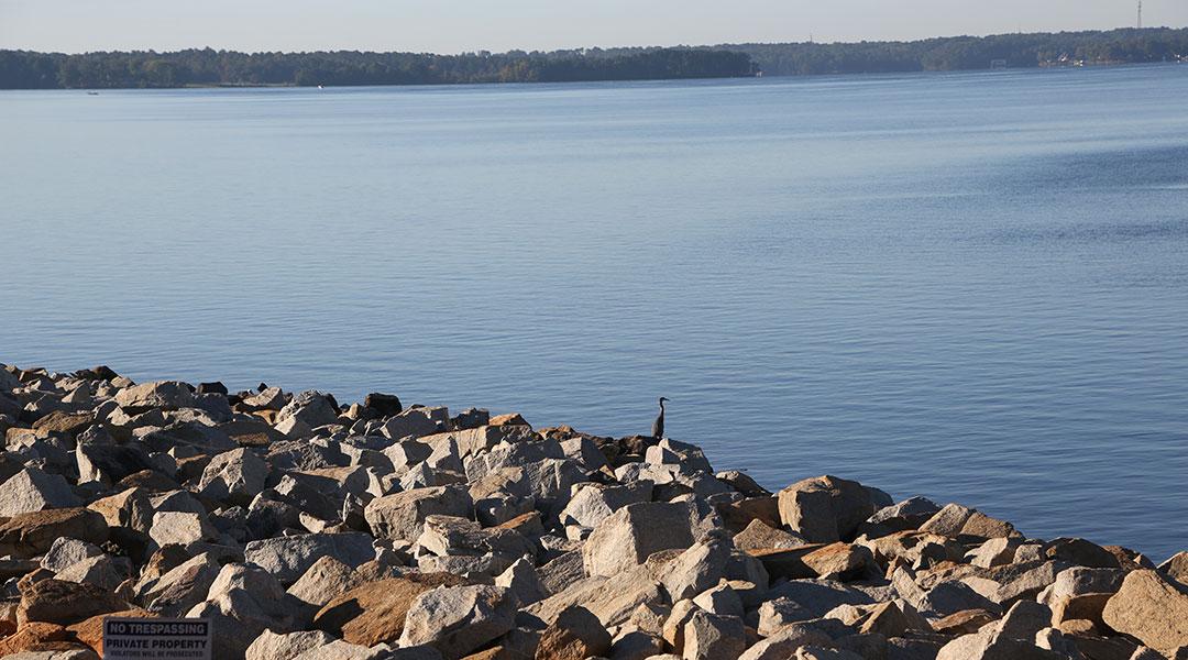 Murky waters: Controversy, confusion swirl around Lake Murray Dam Swim